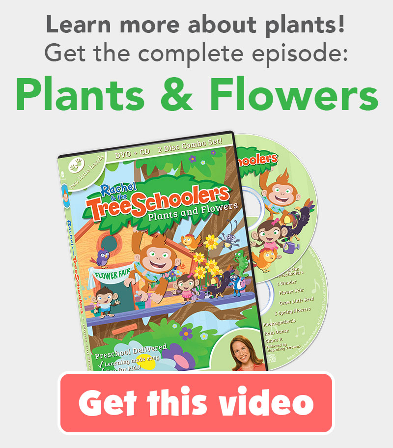 TreeSchoolers Plants and Flowers DVD